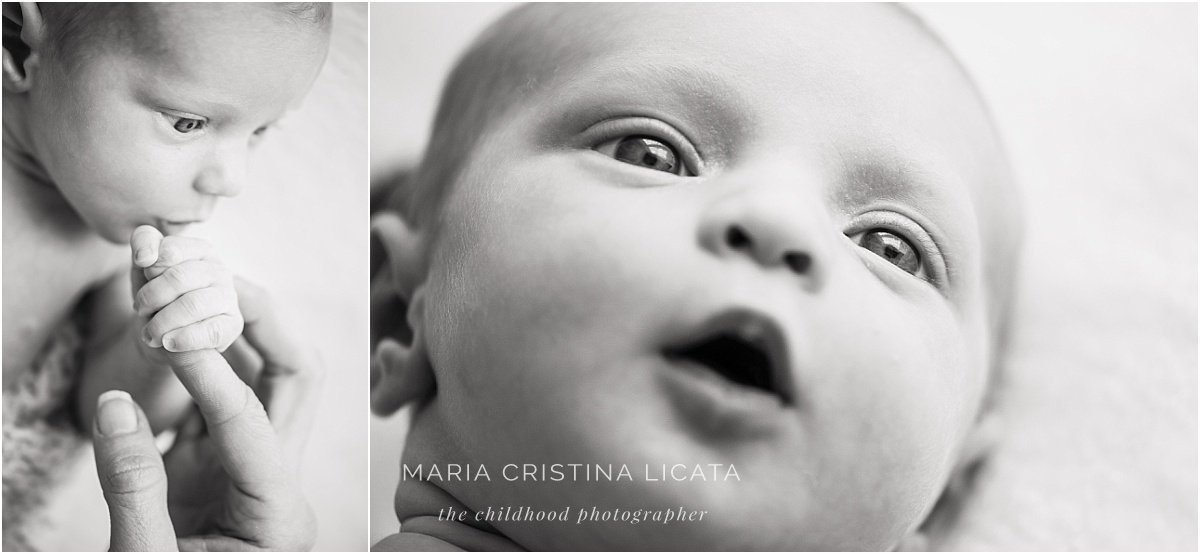 winchester newborn photography